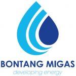 Pengumuman Lulus Berkas Administrasi Rekrutmen Direktur PT. Bontang Migas dan Energi Tahun 2017